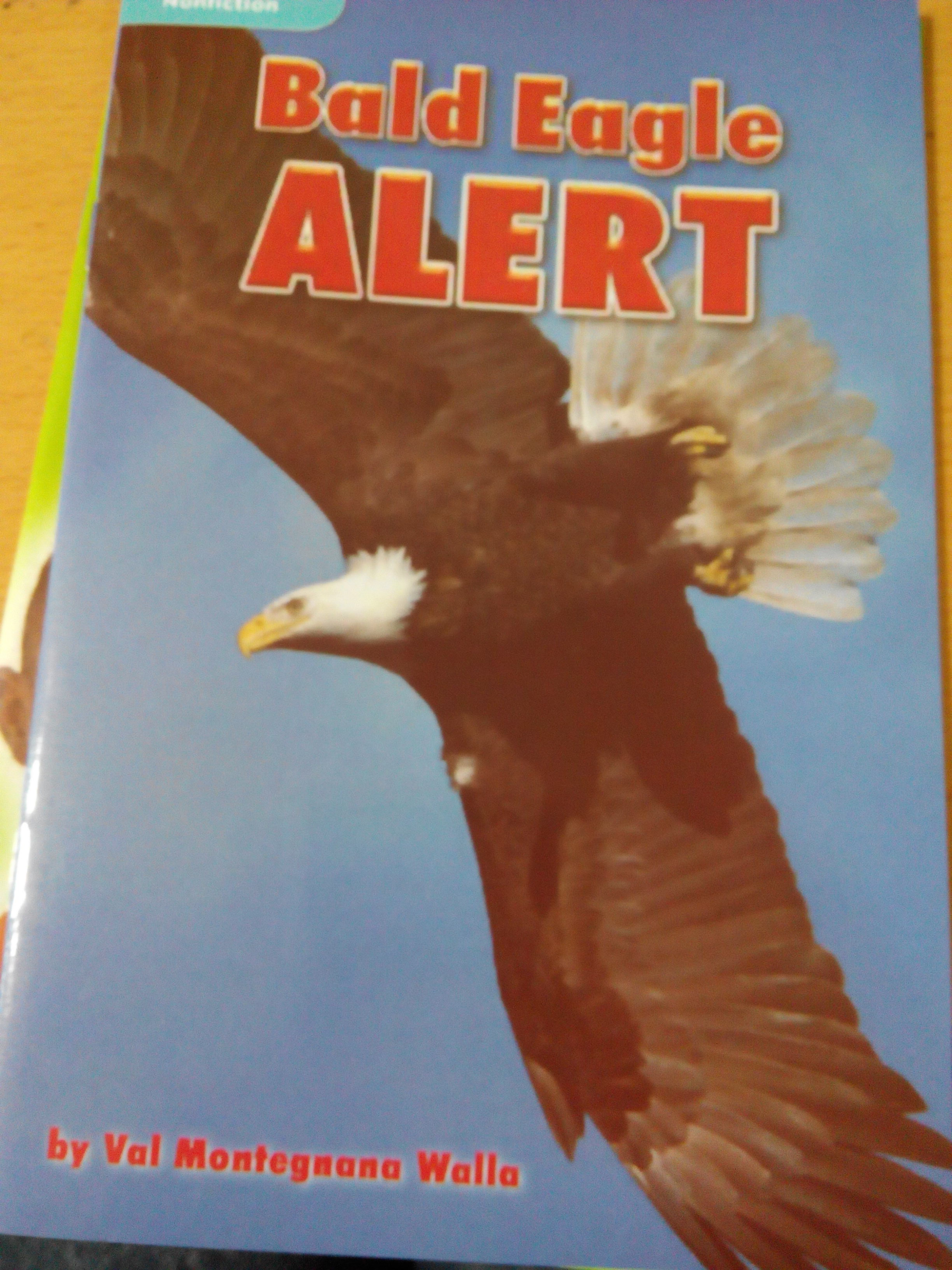 bald eagle alert