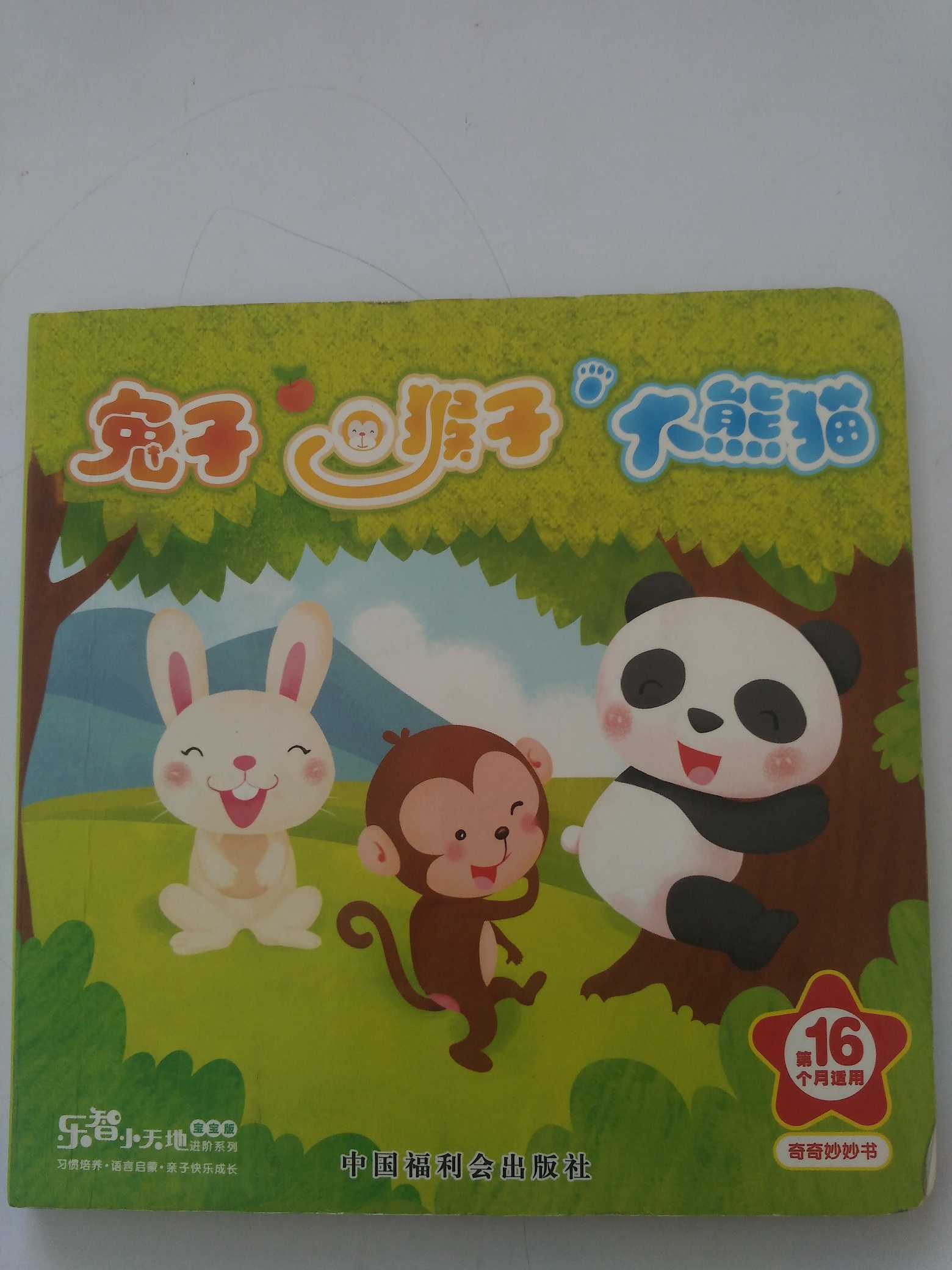 兔子,猴子,大熊猫